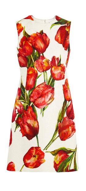 Dolce & Gabbana Floral-print cotton-blend matelassé mini dress